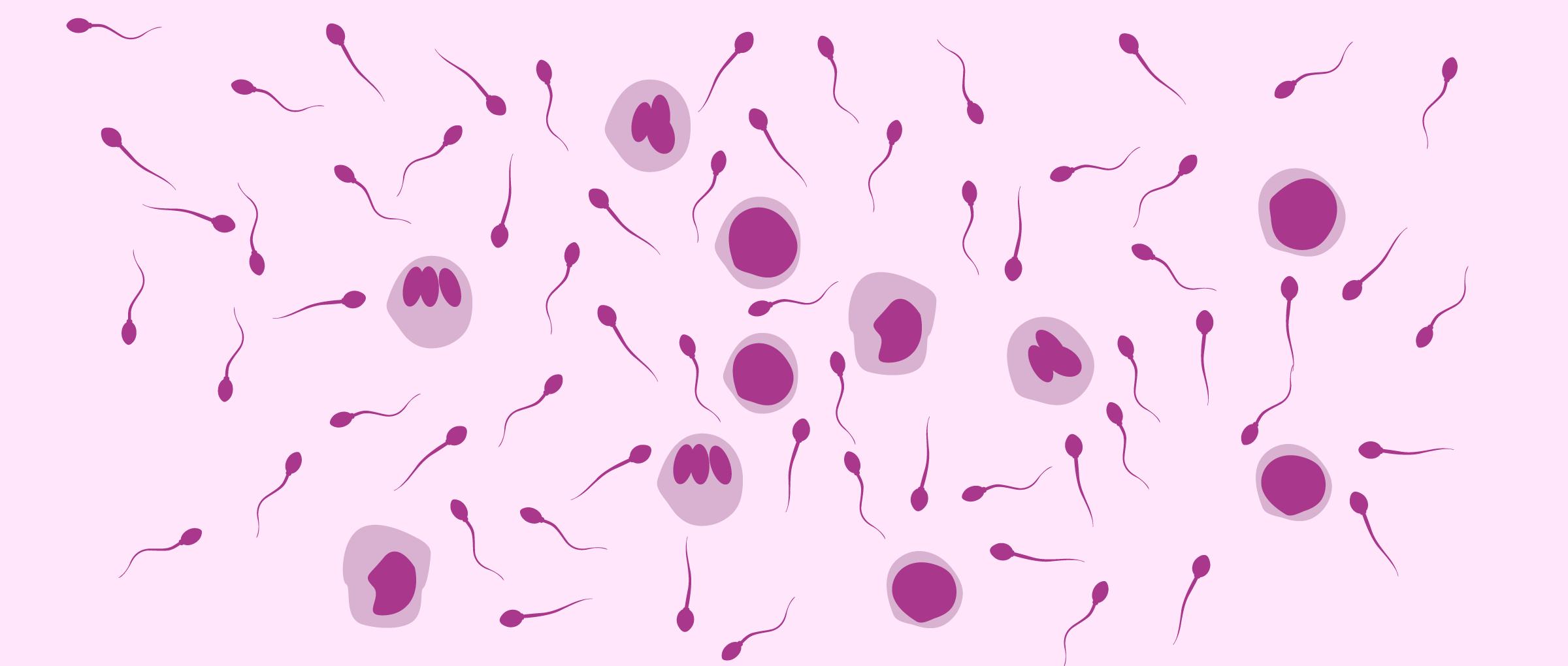 xét nghiệm tinh dịch đồ ở nam giới là để xác định chất lượng tinh trùng và tình trạng sức khỏe sinh sản